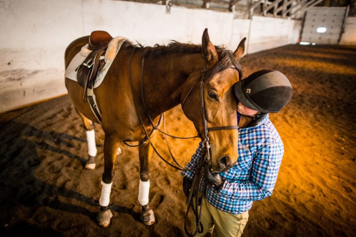 what-you-need-to-know-about-horse-rider-sponsorships