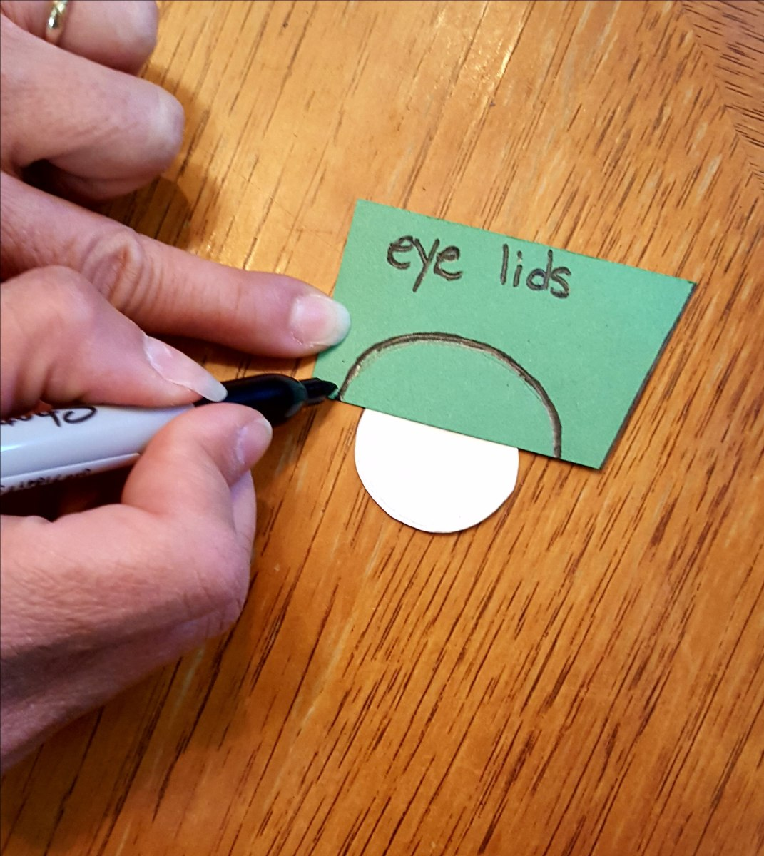 Drawing the Eyelids