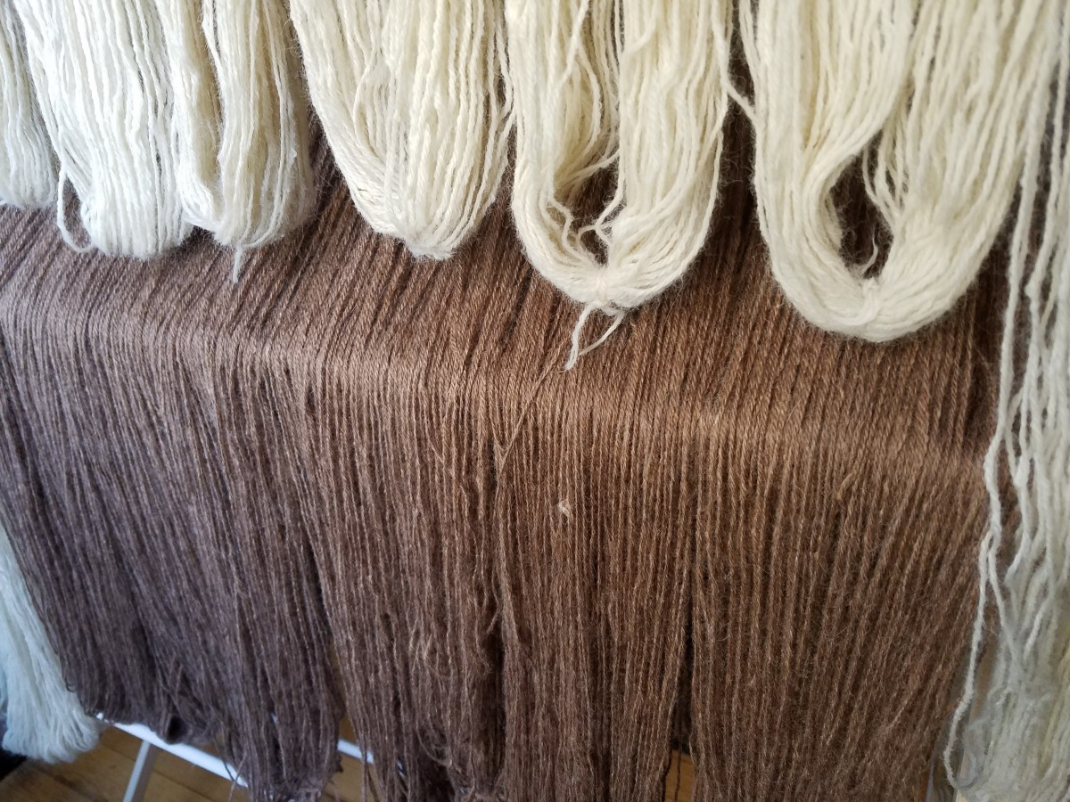 Alpaca yarn drying after being hand washed.