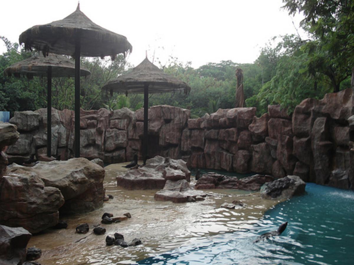 safari-world-in-bangkok-thailand