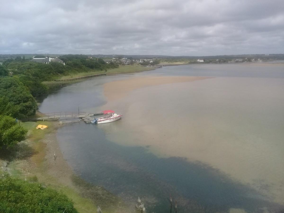 where-the-dolphins-swim
