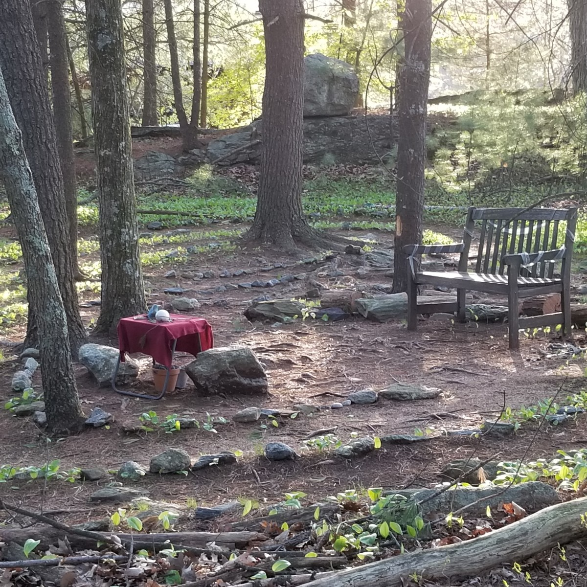 Sitting on the bench at the center of the labyrinth path among the trees is pure poetic enchantment, which I am blessed to witness every day.