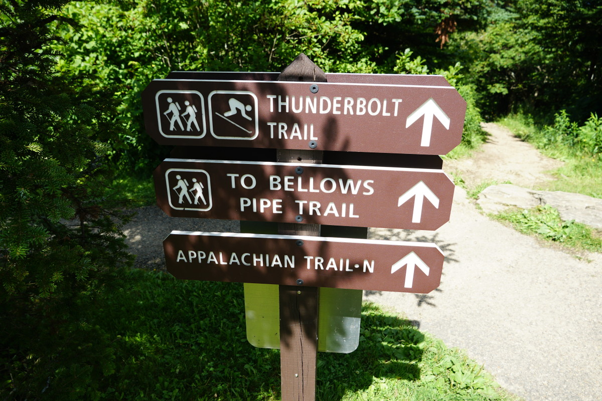 Many Trail Options Available