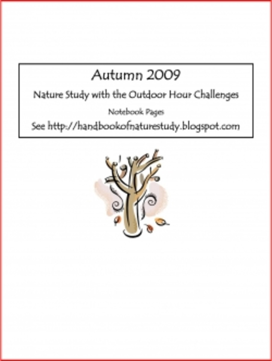 Outdoor Hour Challenge Autumn Notebook Page