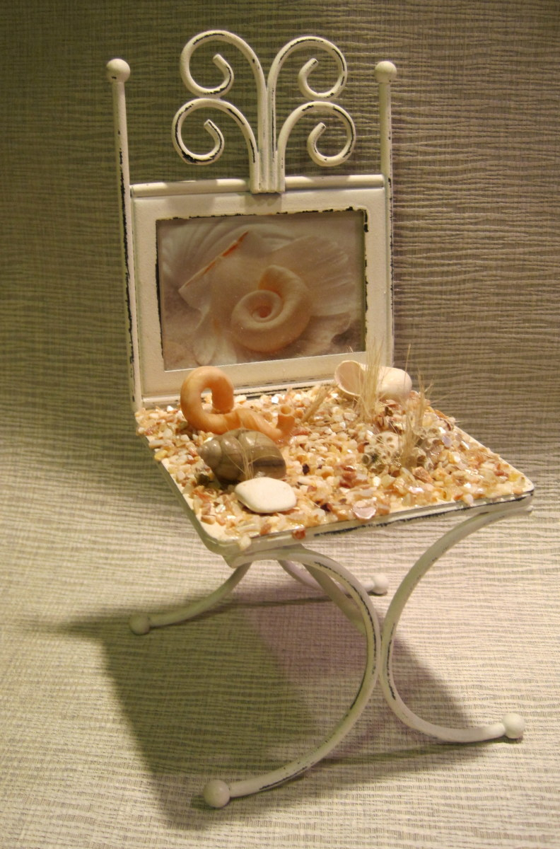 shell-sea-to-shore-home-decor-and-collecting
