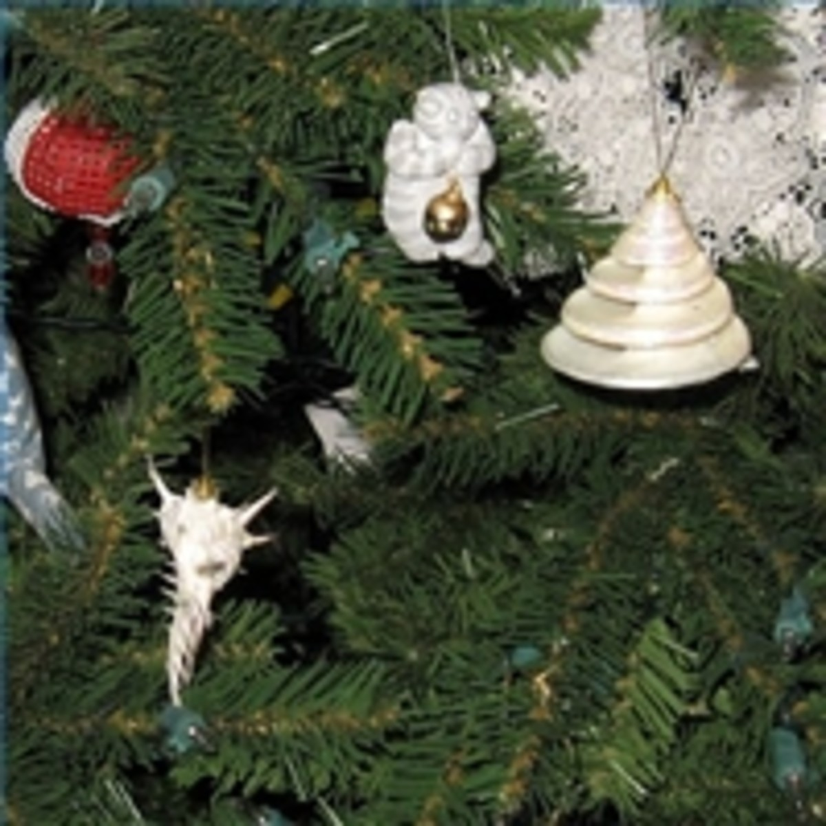 This is a close-up of my own Florida Christmas tree so you can see the pretty seashells on it.