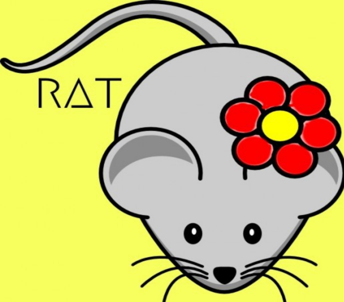 The Year of the Rat 2021