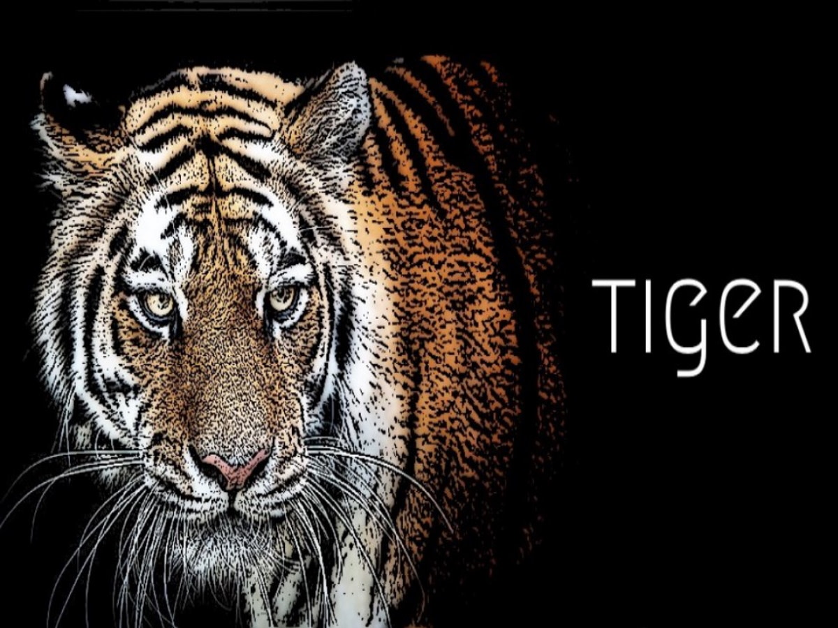 Year of the Tiger 2021