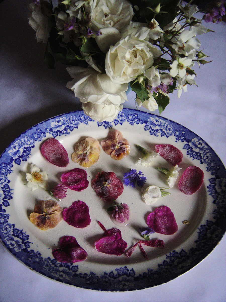 Decorate the plate with sugared flowers