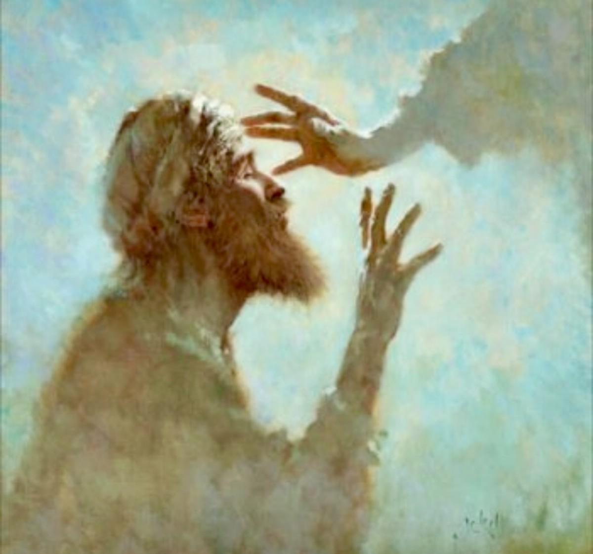 Daily Mass Reflections - 11/19