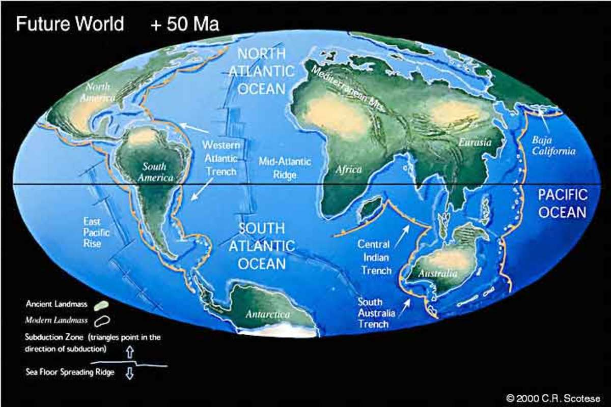 The World 50 Million  Years from Now