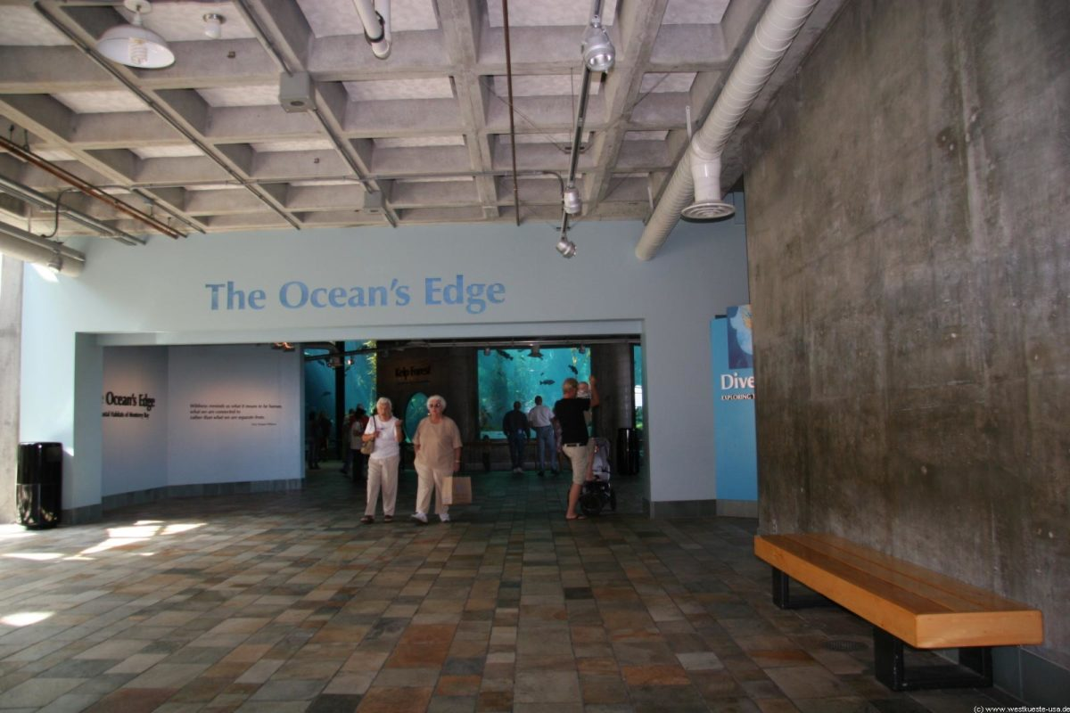Ocean's Edge At Monterey Aquarium