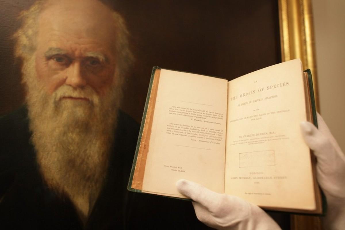 Charles Darwin Scientist