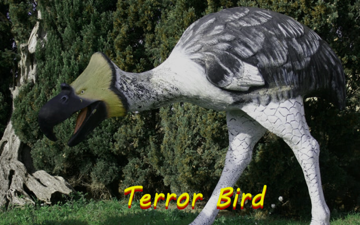 During its time on the planet, the terror bird was known to be a fierce apex predator.