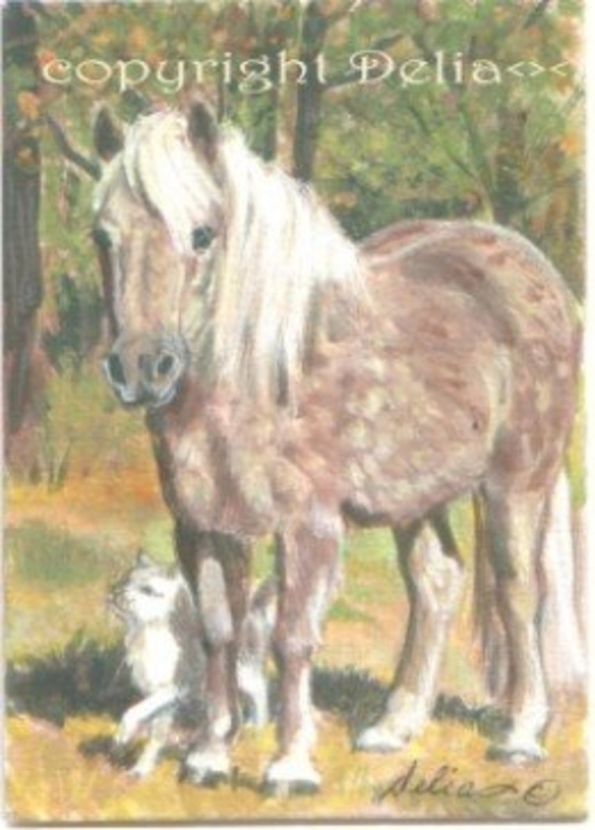 ACEO Miniature Painting of Princess our Pony