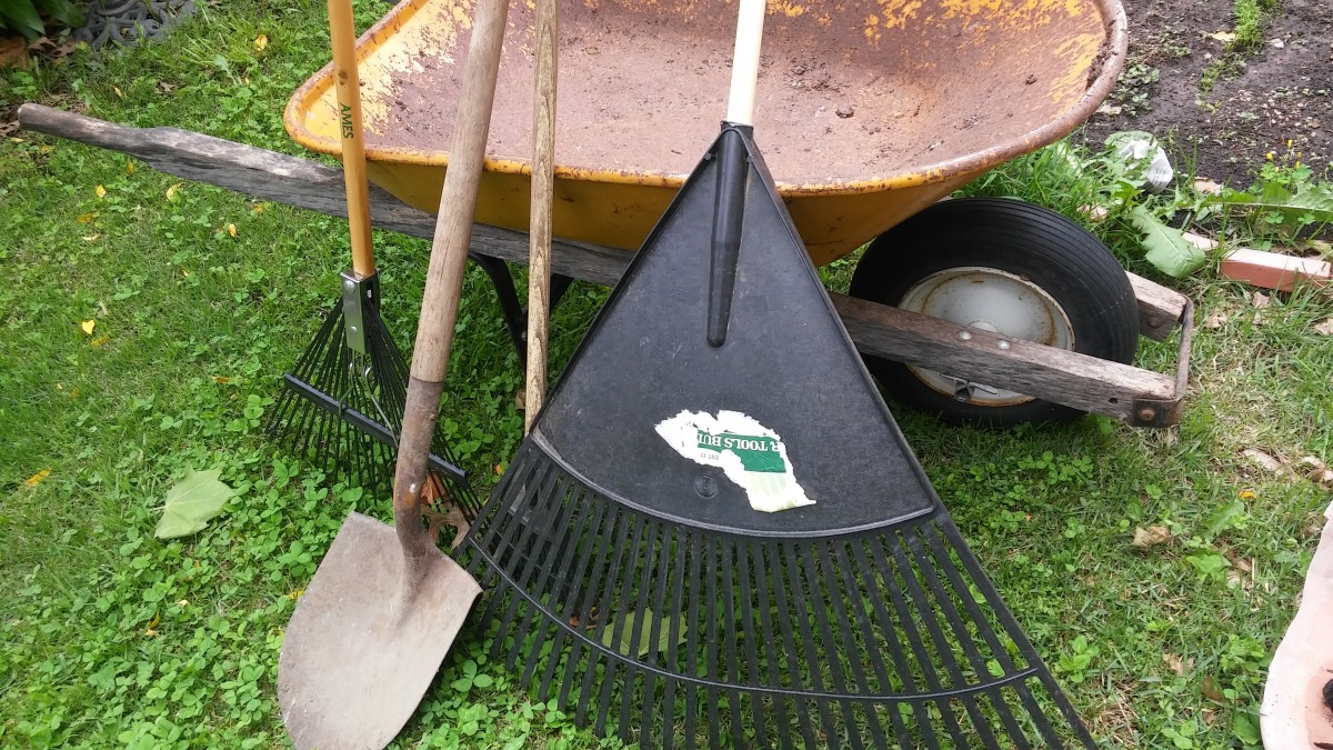 Along with a lawnmower and trimmer, additional tools needed to get your yard work done are different sizes of rakes.   A shovel and wheelbarrow come in handy too.