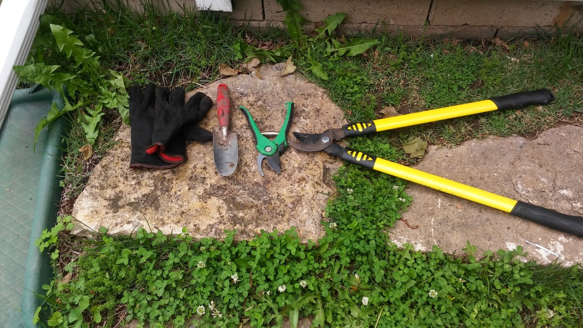 The smaller tools are pruning shears, trowel, gloves and shears