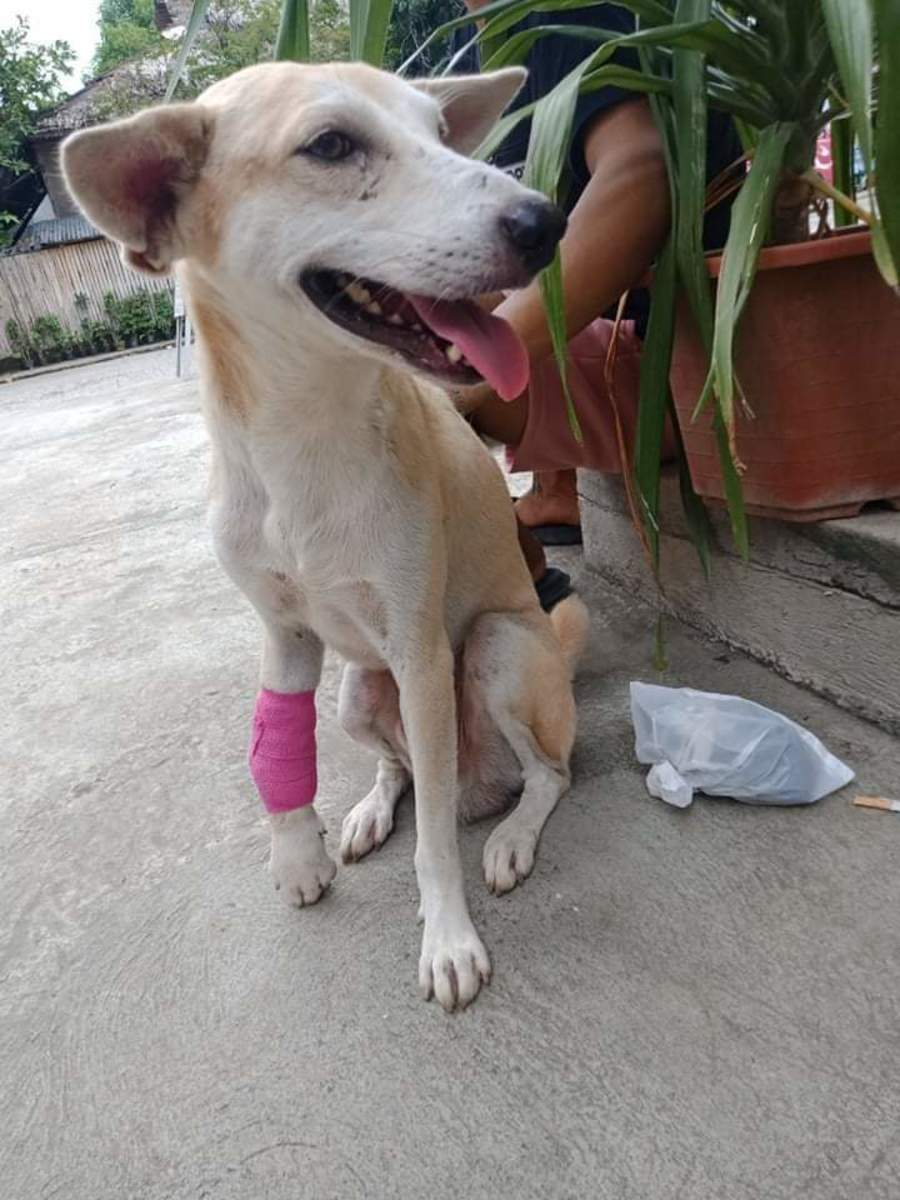 The bandage on my right foot is so stylish. I like it. See my smile?