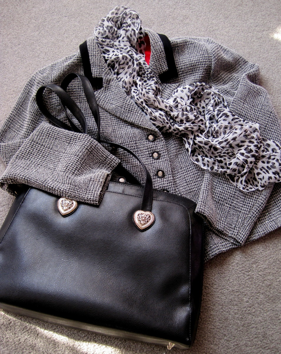 Purse, Jacket and Scarf (All for under $20)