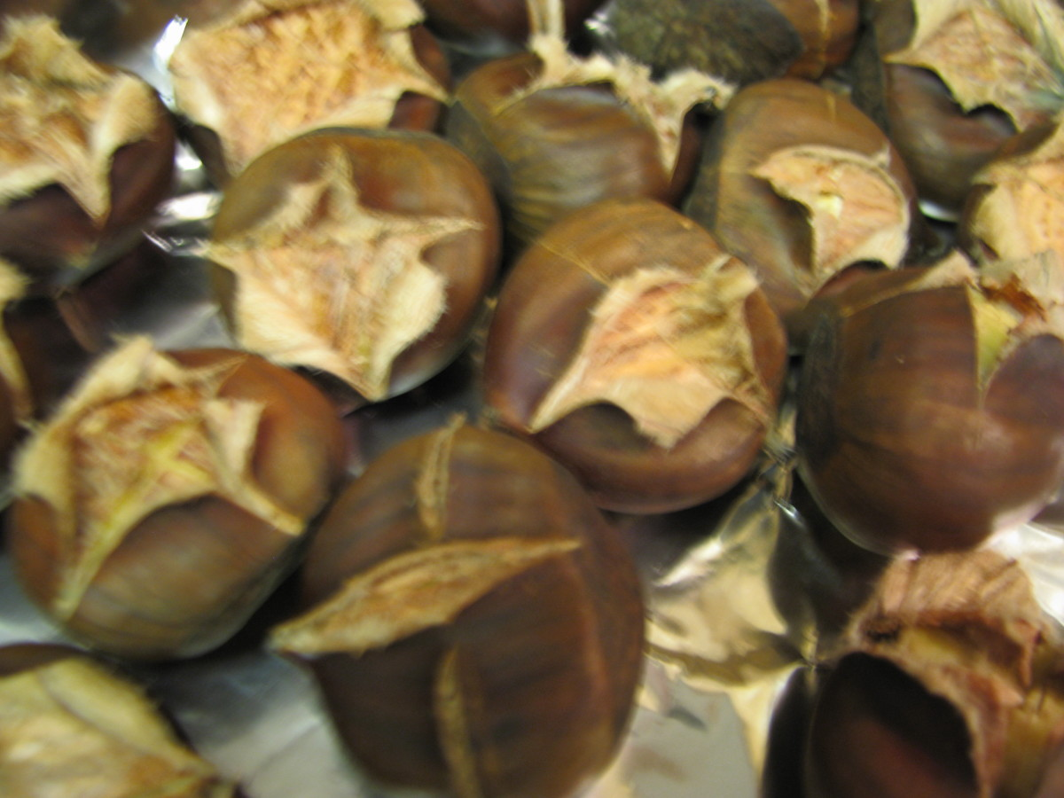 Roasted Chestnuts. They will open up like this.  Take off the outer and inner husks.  If you have trouble getting the inner husks out, put them back in the oven for another 15 minutes.