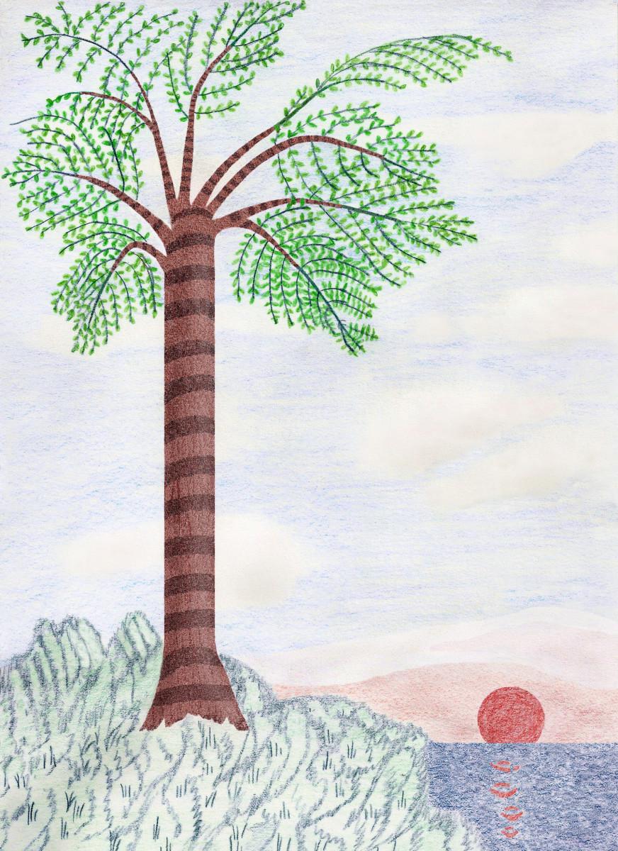 ANCIENT MEDULLOSA TREE DRAWING