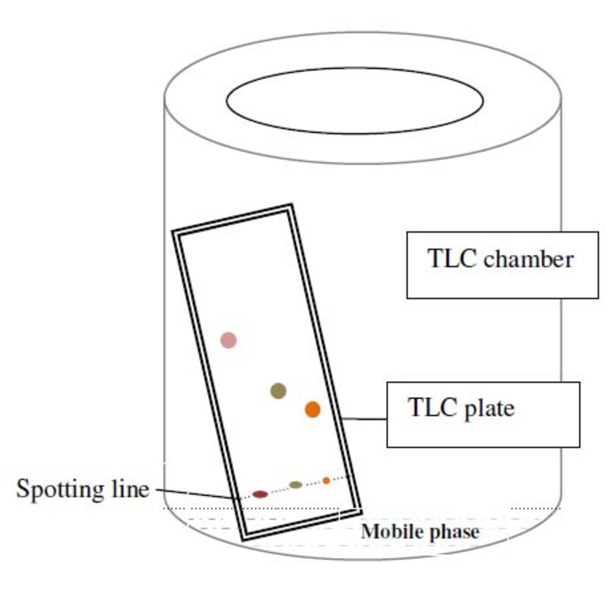 thin layer and column chromatography extracted Extract was subjected to isolation by column chromatography and preparative tlc  by column chromatography has been identified by thin layer.