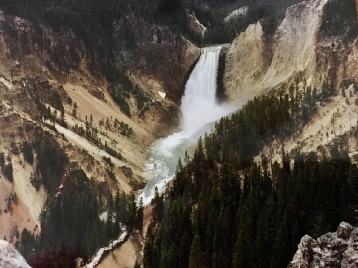 The famous waterfalls at Yellowstone National Park