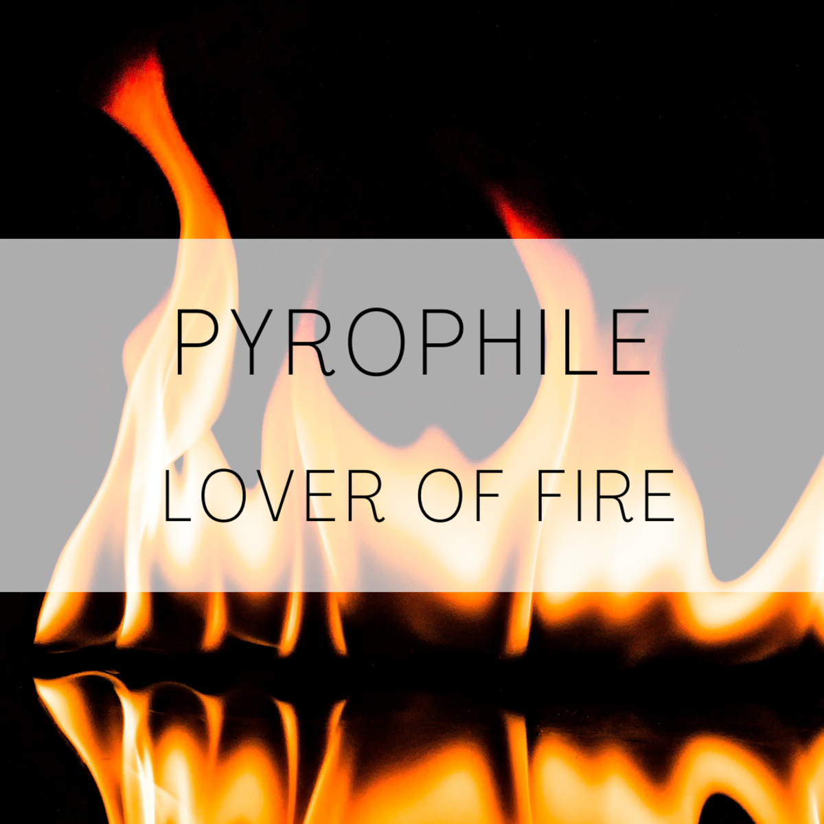 Pyrophile, a lover of fire