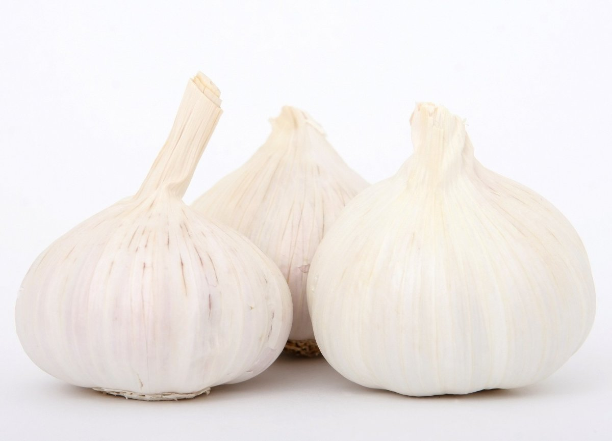 Picture for garlic/aglio