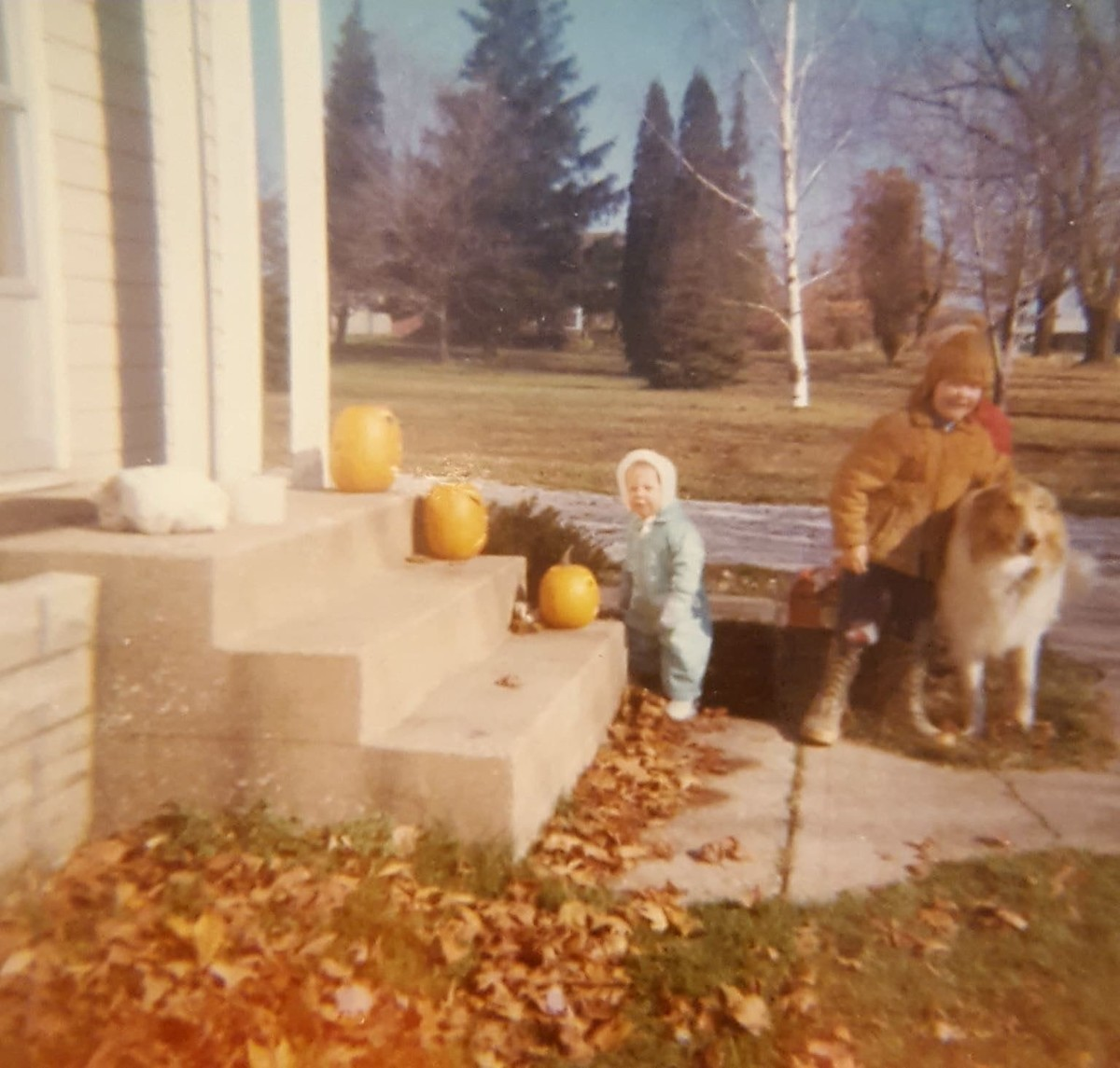 My Boyhood Collie, Sparky, with the neighbor's child
