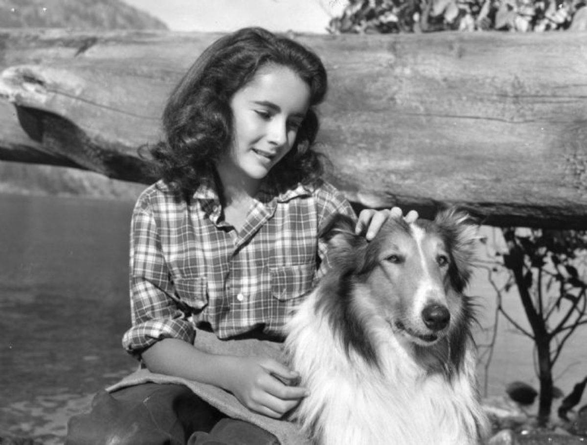 Elizabeth Taylor and Pal in Courage of Lassie