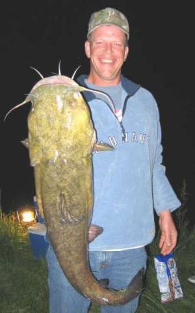 You can catch some really big catfish in farm ponds. The catfish in this photo was caught in a farm pond.