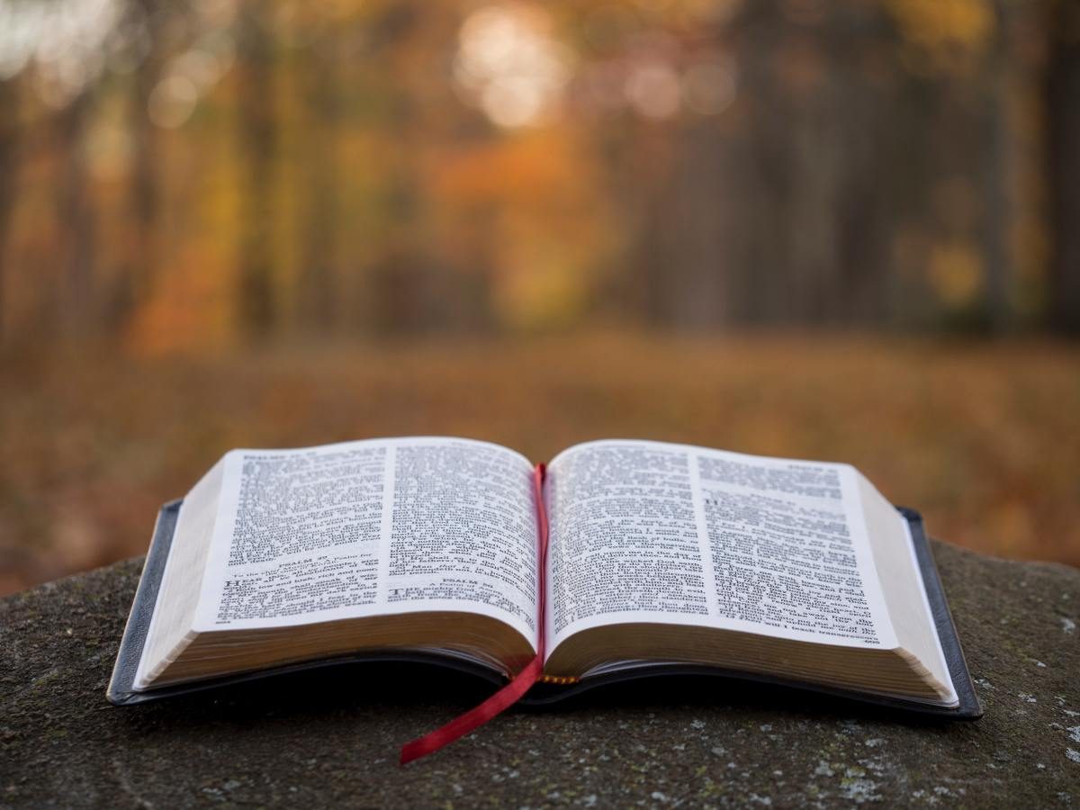 Before laying money on the altar, it would be wise to read Acts 4:34-35.
