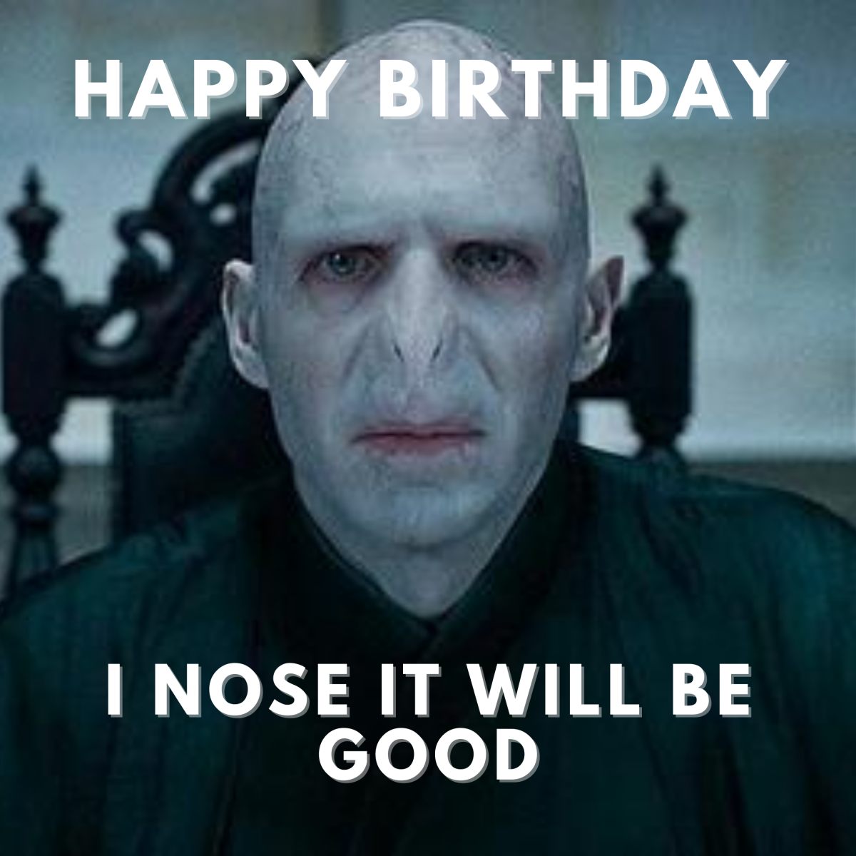 Happy birthday. I nose it will be good.