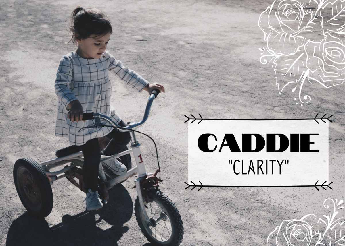 "Caddie (sometimes spelled ""Caddy"") is an old-fashioned name meaning ""clarity."""