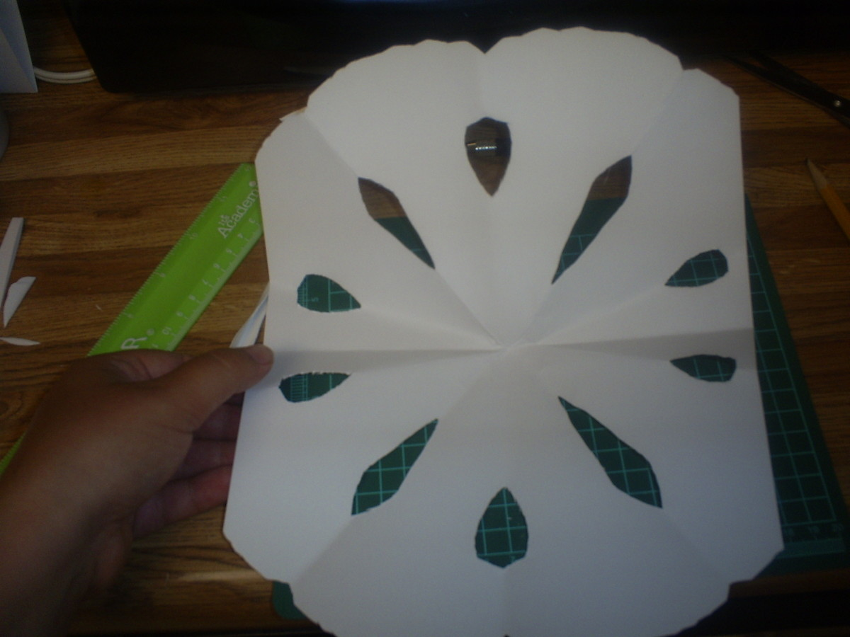 Another paper snowflake.