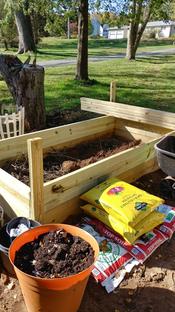 planning-a-great-vegetable-garden-for-the-first-time