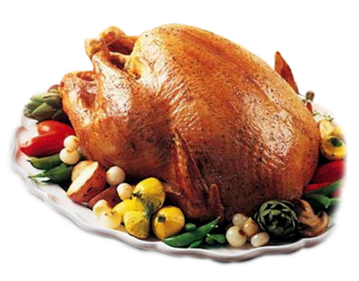 crispy turkey skin