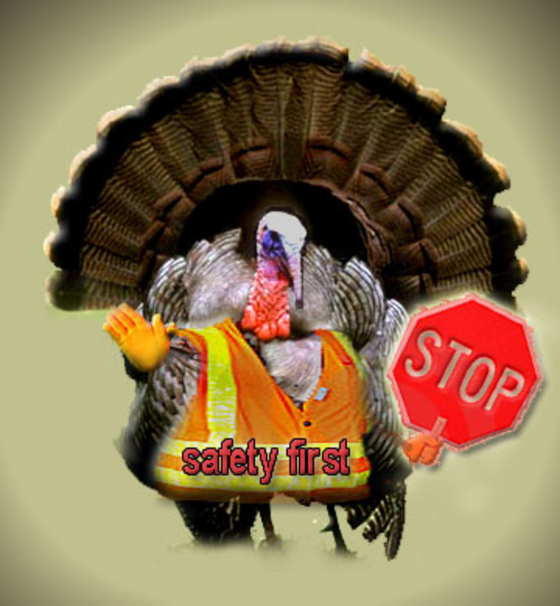 TURKEY SAFETY FIRST!