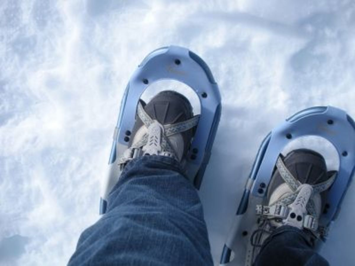 Love My Snowshoes!