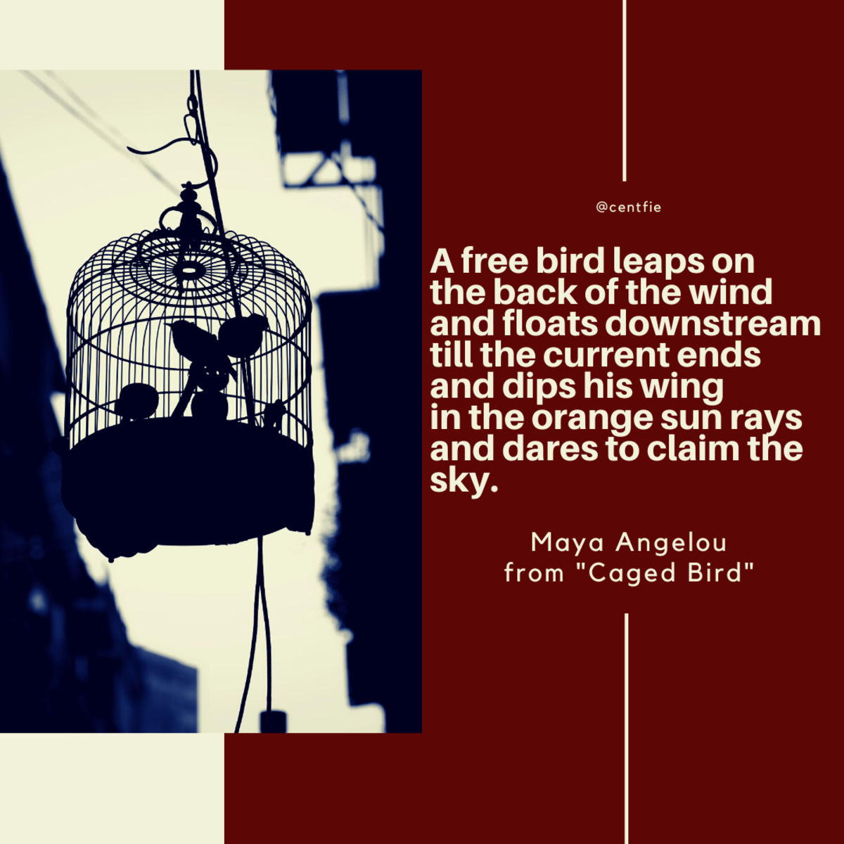 analysis-of-i-know-why-the-caged-bird-sings-by-maya-angelou