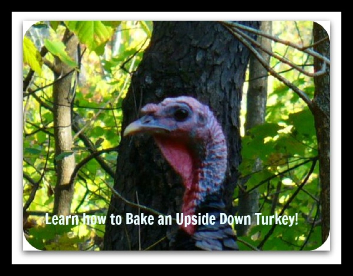 Scrumptious Upside Down Turkey ~ Best Easy Recipe for Thanksgiving, Christmas or Anytime
