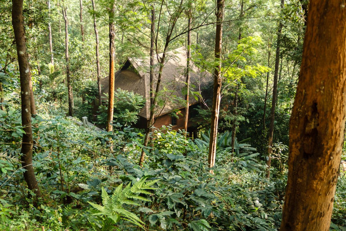 The wooded abode at The Tamara Coorg Resorts.