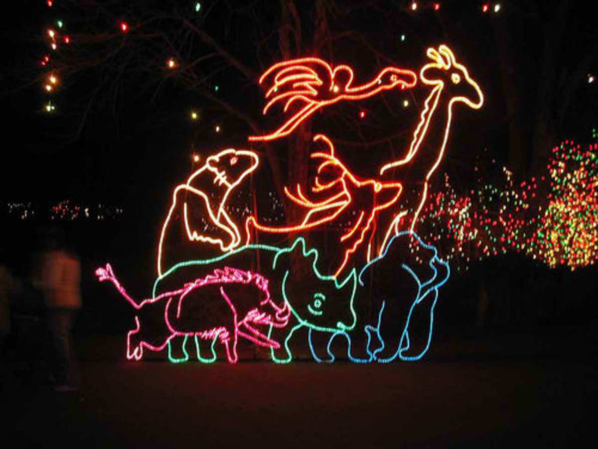 ONe of the newer light sculptures at our zoo.
