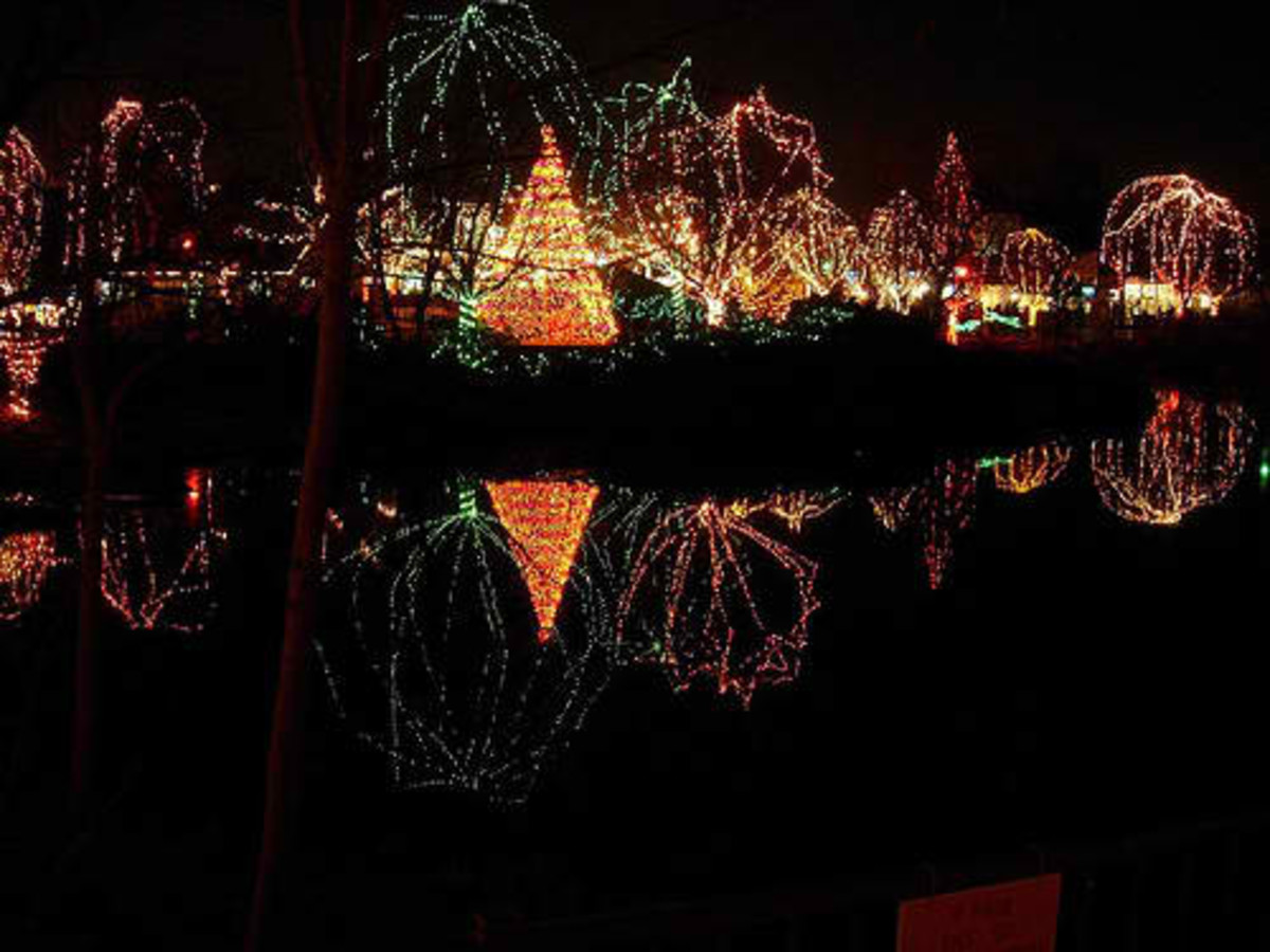 The entire landscape fo the zoo is covered in lights such as these.