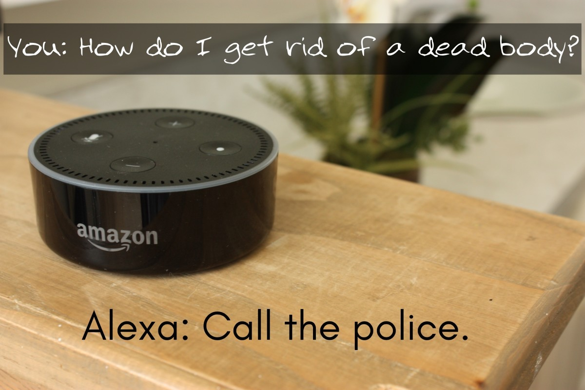 Funny Meme Questions To Ask : Funny amazon alexa easter eggs including hidden secrets