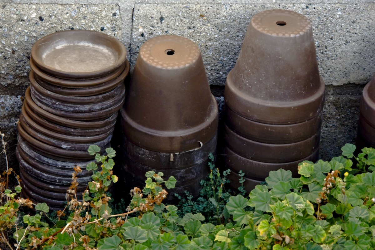 Terra cotta pots retain moisture, and help keep soil from drying out.