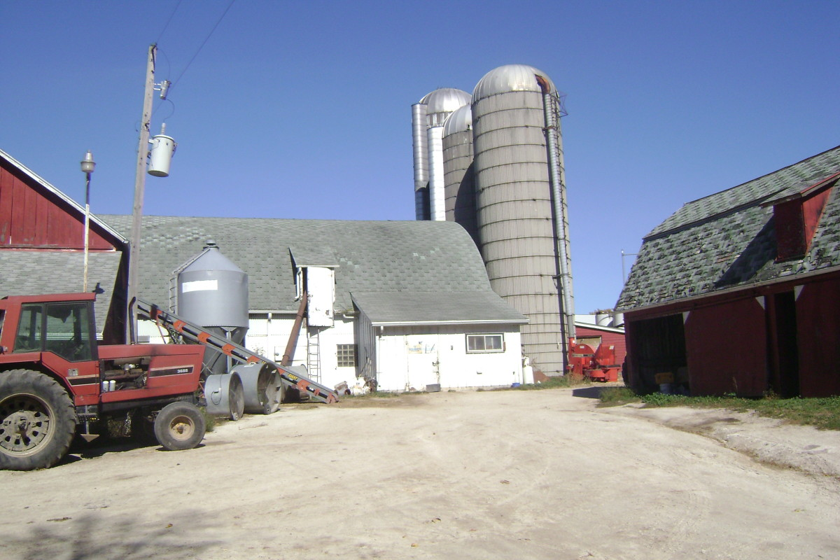 working-on-a-dairy-farm-in-wisconsin
