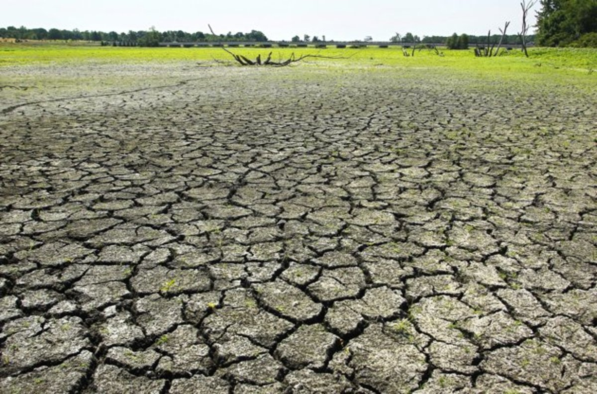 Continuing drought in the Midwest of the United States could create food shortages.