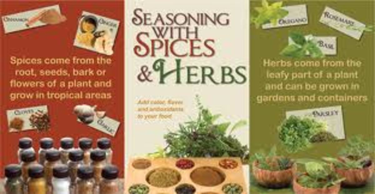 Helpful Hints for Using Spices and Herbs for Maximum Flavor